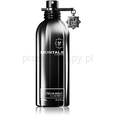 Montale Steam Aoud 100 ml woda perfumowana unisex woda perfumowana